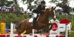 oakwood_main Local Attractions, Equestrian, Tourism, Horses, Activities, Animals, Turismo, Animales, Animaux