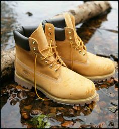 44016b2d5077 114 Best TIMBS images