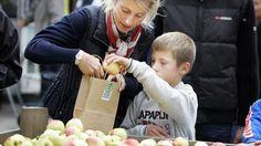 Sydhavsøernes Frugtfestival 19 og 20 september 2015