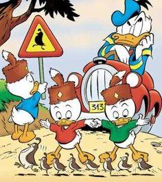 Donald Duck - Disney