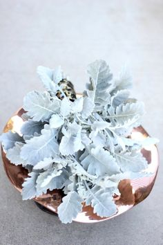 Eclectic and modern metallic wedding inspiration in slate and copper with unique dusty miller florals! Blue Wedding Centerpieces, Winter Centerpieces, Wedding Bouquets, Wedding Decorations, Centrepieces, Wedding Dresses, Trendy Wedding, Floral Wedding, Wedding Flowers