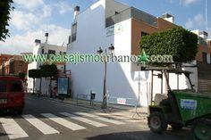 Fachada vegetal en Paterna realizada con el sistema patentado de construcción de jardines verticales de Ignacio Solano