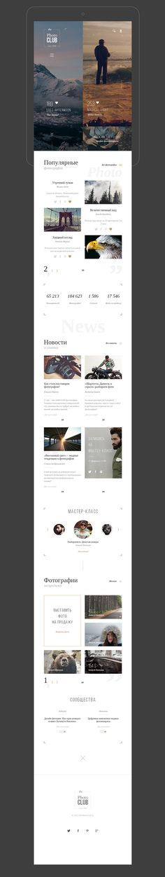 Website for photographers concept