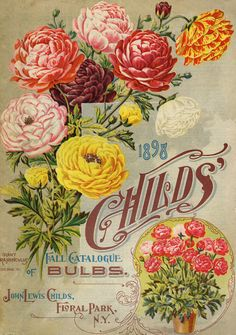 Seed Catalog � for personal use only!