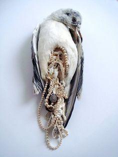D4: Disgusting, Disturbing, Demented, and Delightful! >:D taxidermy art statement pearls bird