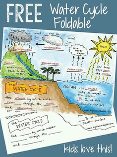 Free water cycle interactive notebook activities & more science doodle free! the water cycle interactive Second Grade Science, Middle School Science, Elementary Science, Science Classroom, Elementary Schools, Science Resources, Science Education, Teaching Science, Interactive Activities