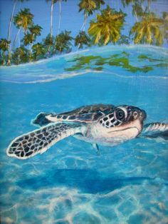 Baby Sea Turtle Painting by Jennifer Belote - Baby Sea Turtle Fine Art Prints and Posters for Sale