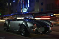 hilgramphoto:  Miami Cobra