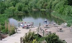 Walking the National Forest Way: a stroll amid a transformed Midlands | Travel | The Guardian