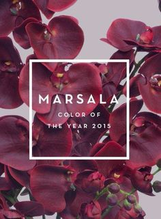 Marsala color Of the Year 2015 Pantone