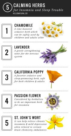 5 Calming Herbs for Insomnia and Sleep Trouble | http://hellonatural.co/5-calming-herbs-for-insomnia-and-sleep-trouble/