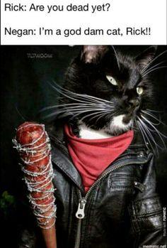 #kitty #thewalkingdead #twd