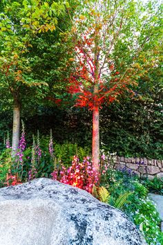 Collingwood Lightings LED-Beleuchtung an der Chelsea Flower Show in London