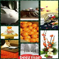 One can find collages for free online on various sites.
