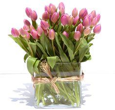 tulipan www.eaquilea.com
