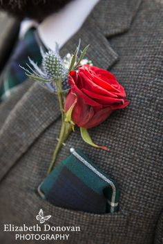 thistle buttonhole, rose button hole, tartan pocket hankerchief
