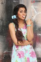 Latest Images of I followed many Journalists to be a Journalist says Nikki Galrani Hot Gallerywww.vijay2016.com