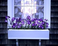 windowsill flower box