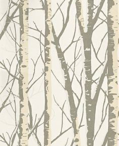 Birch (1904/021) - Prestigious Wallpapers - This design gives the effect of a mysterious Birch wood with its crossed and entwined sleek branches.  Available in 9 colours – shown here in pearl cream and silver on an off  white. Please ask for a sample for true colour match.