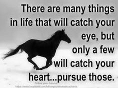 There are many things in life that will catch your eye, but only a few will catch your heart.. pursue those. #quote #cowgirl