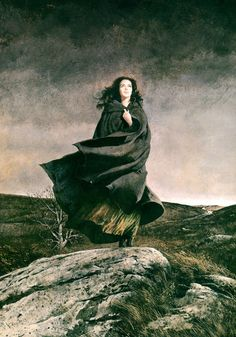 meanwhilebackinthedungeon:   — Robert McGinnis Wuthering Heights
