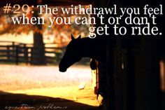 Equestrian Problem #29  The withdrawal you feel when you can't or don't get to ride.  Sadly, I know it all too well now.    Submitted by : theheffernanclan