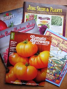 Heirloom+Vegetable+Seed+Catalogs | ... seed catalogs signals the start of the 2013 vegetable gardening season