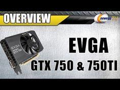 EVGA GeForce GTX 750, 750 SC, 750 Ti SC, 750 Ti FTW Video Cards - Newegg TV - http://cpudomain.com/graphics-cards/evga-geforce-gtx-750-750-sc-750-ti-sc-750-ti-ftw-video-cards-newegg-tv/