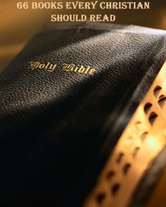 Thumb-indexed Thompson Chain Reference Bible. More than a book, I know. My favorite study bible, along with a Greek/English New Testament. This Is A Book, I Love Books, The Book, Good Books, Books To Read, My Books, Amazing Books, Bible Study Tools, Lord