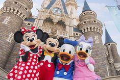 Disney Cruise Line, Disney Parks, Walt Disney, Hong Kong Disneyland, Disneyland Resort, Disney Love, Disney Magic, Disney Playlist, Disney Insider