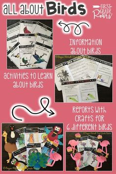 Are you teaching your students the characteristics of birds? This packet includes guided reading strategies to learn about birds. Included you will receive: A mini book about birds, (copy two per page) with 4 activities to go along with it. 8 colorful posters displaying the bird characteristics. 5 writing activities on birds Word work: abc order, word search, & syllables  Mini report templates for 6 different animals: peacock, flamingo, parrot, penguin, toucan & ostrich 5 matching crafts for…