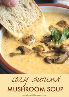 There's so much flavor in this easy and quick Mushroom Soup! The best part is th. Puree Soup Recipes, Best Soup Recipes, Pureed Food Recipes, Healthy Soup Recipes, Fall Recipes, Vegetarian Recipes, Cooking Recipes, Blender Recipes, Juicer Recipes