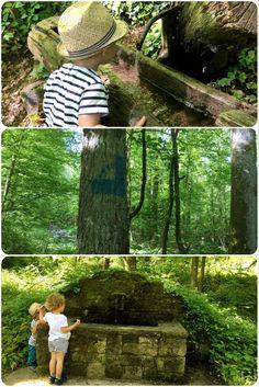 Schöner Spaziergang: Brunnenweg bei Pfaffenhofen