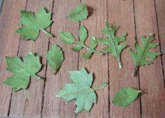 tutorial: miniature leaves