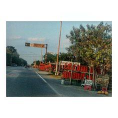 On instagram by osiris.96 #landscape #contratahotel (o) http://ift.tt/1KP0eVq . . . . . #ayer #carretera #padilla #tamaulipas #viajes #miel #naranjas #paisajes #natural #like #travel #car #orange #mexico
