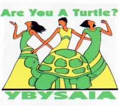 Are You A Turtle