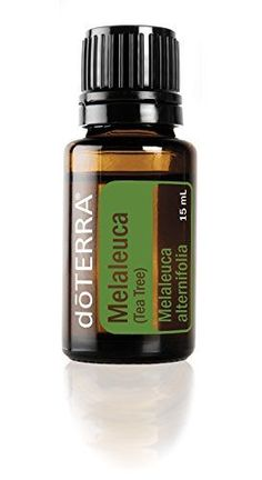 doTERRA Melaleuca Tea Tree Essential Oil  15 mL * Details can be found by clicking on the image.