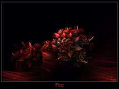 043 - Fire by Brigitte-Fredensborg