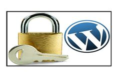 Help to find your lost password for wordpress admin