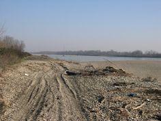 Anche gli estesi ghiareti che ospitano un'importante popolazione di Occhione (monitorata costantemente dall'Associazione) non sfuggono al degrado che interessa settori importanti del fiume (www.uomoeterritoriopronatura.it).