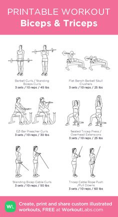 Gym Workout Plan For Women, Gym Workouts Women, Fitness Workout For Women, Weekly Gym Workouts, Barbell Workout For Women, Total Gym Workouts, Arm Workouts, Exercises, Bicep And Tricep Workout