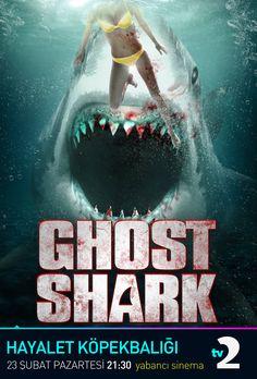 Hayalet Köpekbalığı (Ghostshark)