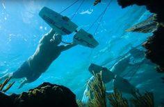 Flying Underwater In 4k (Subwing) http://viralselect.com/flying-underwater-4k/  #Flying #Ocean #Sea #Subwing #Underwater #ViralVideo #Water #WaterSports