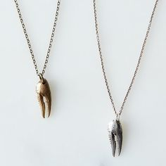 Crawfish Claw Necklace on Provisions by Food52