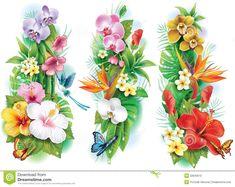 arranjo-das-flores-tropicais-32845610.jpg (1300×1034)
