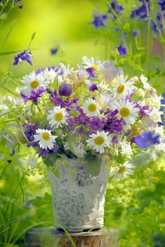 A daisy bouquet for you Vickie. My Flower, Pretty Flowers, Fresh Flowers, Spring Flowers, Flower Art, Flower Power, Wild Flowers, Spring Bouquet, Ikebana