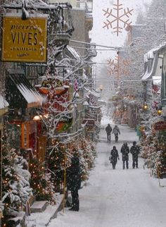 This is a perfect depiction of everyone's idea of what Christmas should look like...Christmas in Old Quebec Street, Canada