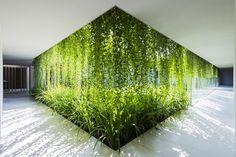 sombreamento e barreira visual com uso de vegetação