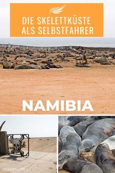 Die Schiffswracks an der Skelettküste Namibias laden zum Entdecken  ein, doch sind die meisten nur aus der Luft zu sehen. Den südlichen Teil  der Skeleton Coast kannst du jedoch ganz einfach als Selbstfahrer auf  einer Tour entdecken. Und auch dort warten schon die ersten  Schiffswracks auf dich.Finde im aktuellen Blogbeitrag alle wichtigen Tipps für deine Namibia Reise an die Skelettküste.#namibiarundreise Safari, African Jungle, Africa Travel, Van Life, Wonderful Places, Road Trip, Camping, Hotels, Middle