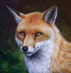 The fox - acrylic on canvas panel | Video tutorial step-by-step available here:  http://www.youtube.com/watch?v=RHYWNRVsRh0=youtu.be